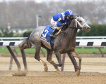 Mohaymen wins the Remsen at Aqueduct, Nov. 28, 2015