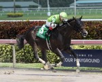 Valid wins the 2016 Skip Away at Gulfstream Park