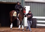 Nyquist at Pimlico