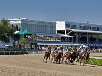 Racing at Tampa  Bay Downs