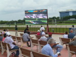 Fans at Gulfstream Park West in 2015 --Photo by Barry Unterbrink