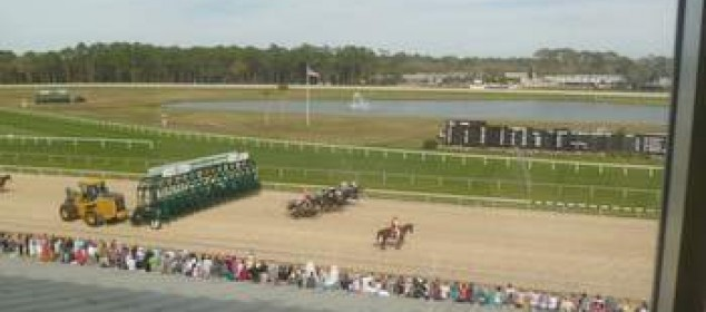 Tampa Bay Downs, March 5, 2016