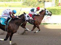 Racing  at Hialeah Park