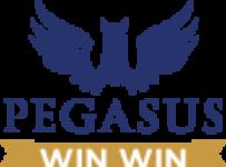 PegasusImage